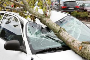 car crash burbank