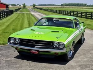 Read more about the article Muscle Cars: What Killed The Industry?